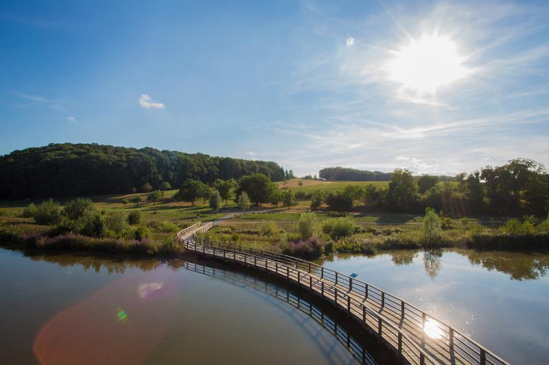 Im Vordergrund Blick auf den Neckar und eine Brücke, im Hintergrund Wiesen und Bäume. Die Sonne strahlt vom Himmel.